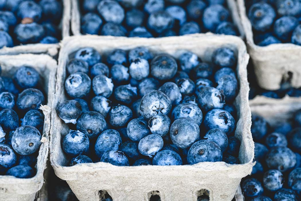 How Blueberries Can Improve Your Health