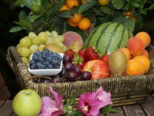 Trivsel via frukt